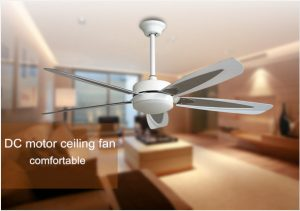 52inch-ceiling-fans-with-dc-motors