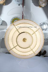 led-ceiling-fan-light-with-acrylic-fans-blade